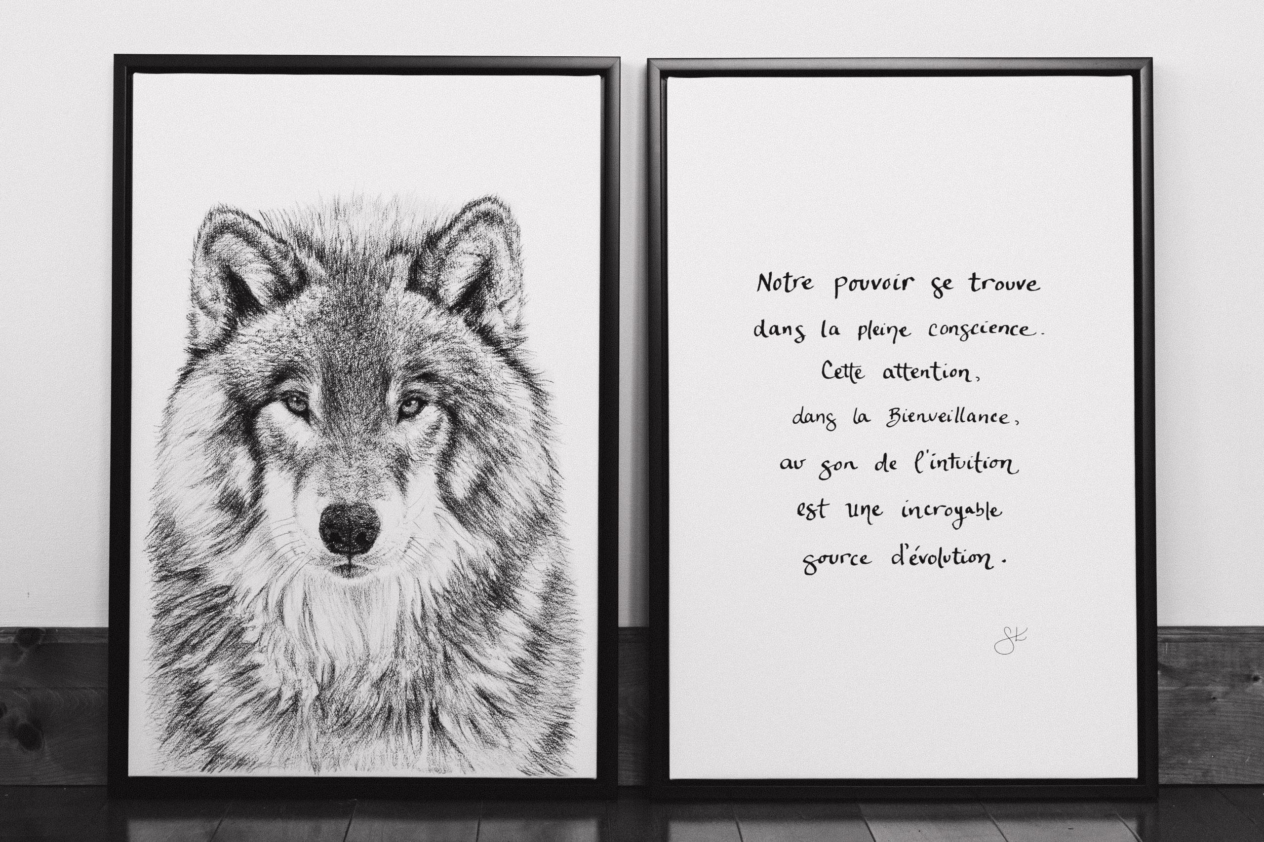 Le Loup et La pleine conscience