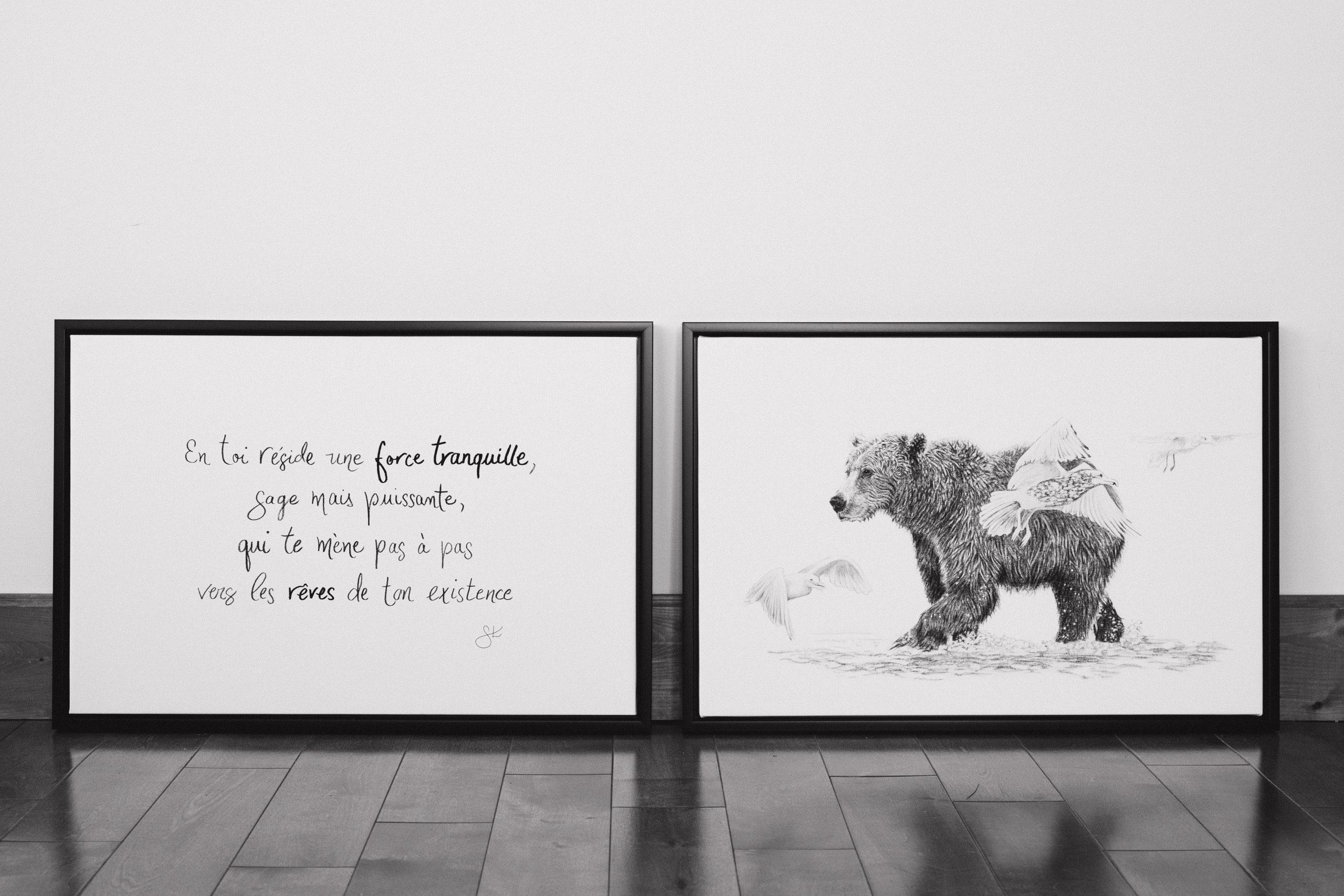 L'Ours et La force tranquille